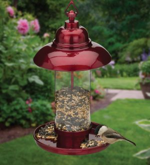 Classic Metallic Burgundy Bird Feeder
